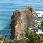 Lion Rock South Coast Track