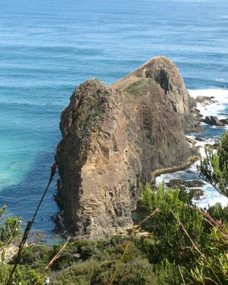 Lion Rock South Coast Track