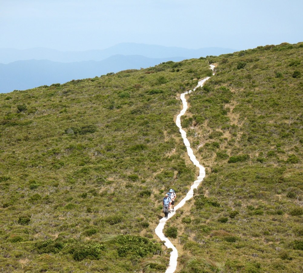 Ironbound Ranges - South Coast Track